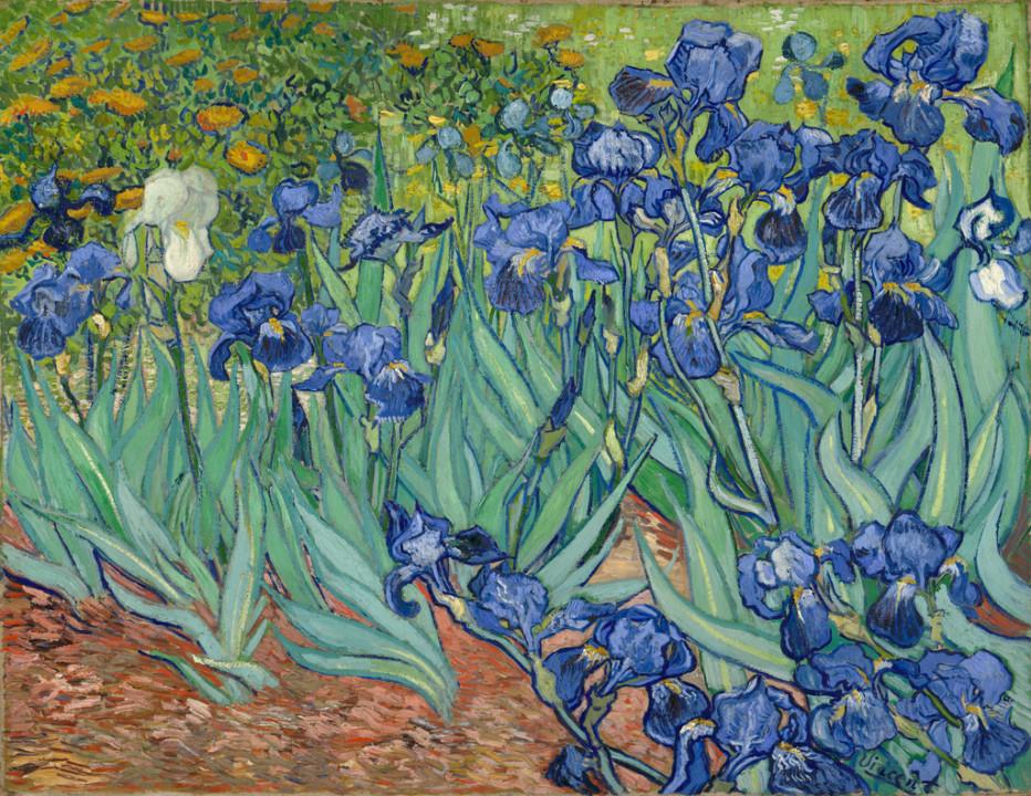 slika Irisi - Van Gog
